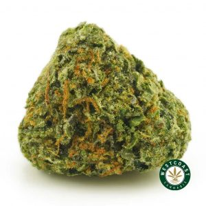 Buy Cannabis Island Pink Kush at Wccannabis Online Shop