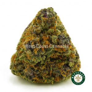 Buy Cannabis Purple Punch at Wccannabis Online Shop