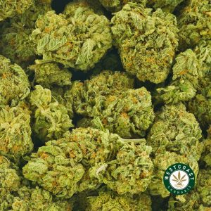 Buy Cannabis Rainbow Kush at Wccannabis Online Shop