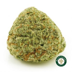 West Coast Cannabis Weekly New Drops + Sale Promo Code Inside