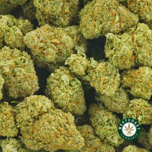 Buy Cannabis Pineapple Cheesecake at Wccannabis Online Shop