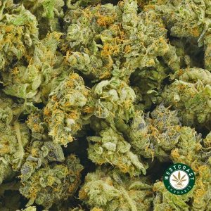 Buy Cannabis Ice Cream Cookies at Wccannabis Online Shop