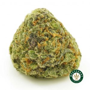 Buy Cannabis Spaceberry at Wccannabis Online Shop