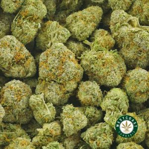 Buy Cannabis Frosty at Wccannabis Online Shop