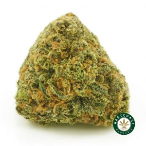 Buy Cannabis Grand Blue at Wccannabis Online Shop