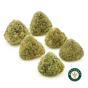 Buy Cannabis Mystery Flower Bundle at Wccannabis Online Shop