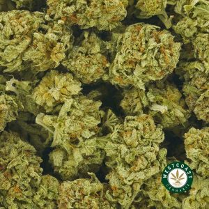 Buy Cannabis Love Potion OG at Wccannabis Online Shop