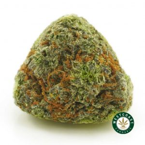 Buy Cannabis Purple Chemo at Wccannabis Online Shop