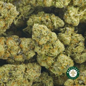 Buy Cannabis Strawberry and Cream Cookies at Wccannabis Online Shop