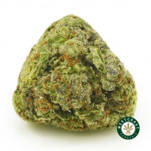 Buy Cannabis LA Confidential at Wccannabis Online Shop