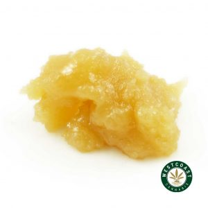 Buy Caviar Blueberry Cheesecake at Wccannabis Online Shop
