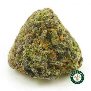 Buy Cannabis Purple Widow at Wccannabis Online Shop