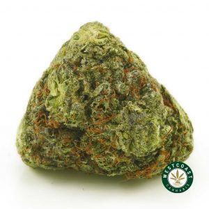 Buy Cannabis Blueberry Breath at Wccannabis Online Shop