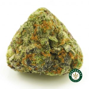 Buy Cannabis High Octane Popcorn at Wccannabis Online Shop