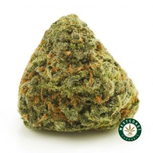 Buy Cannabis Pineapple Godbud at Wccannabis Online Shop