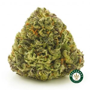 Buy Cannabis Tuna Kush at Wccannabis Online Shop
