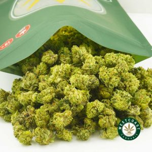 Buy Cannabis Mystery Popcorn at Wccannabis Online Shop