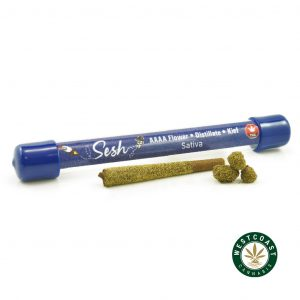 Buy Sesh Preroll Sativa at Wccannabis Online Shop