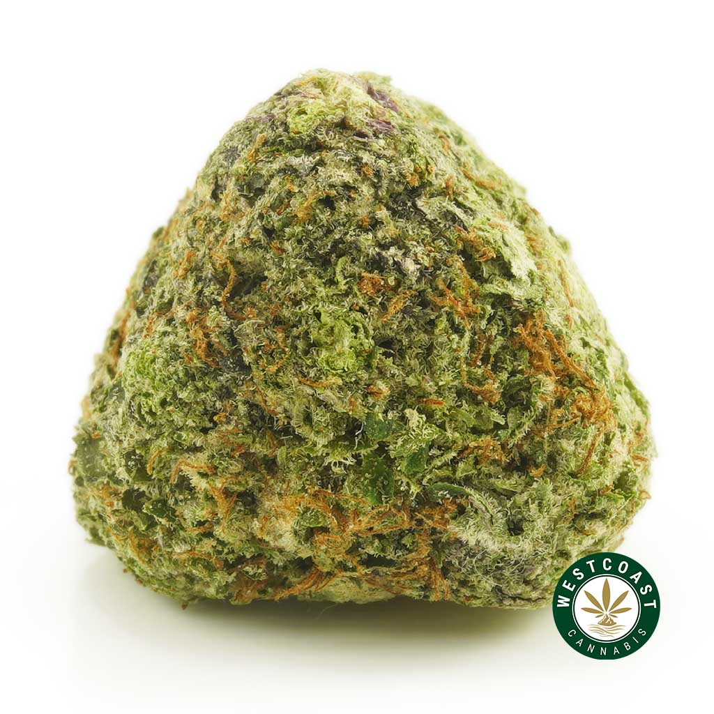 Buy Cannabis Donkey Butter at Wccannabis Online Shop
