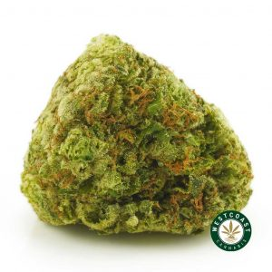 Buy Cannabis Chemdawg at Wccannabis Online Shop