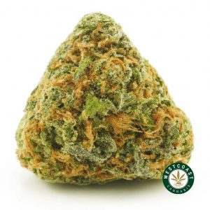 Buy Cannabis Ghost OG at Wccannabis Online Shop