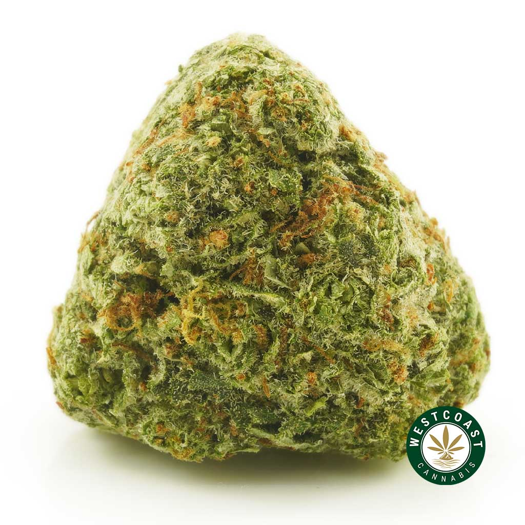 Buy Cannabis Strawberry Mango at Wccannabis Online Shop