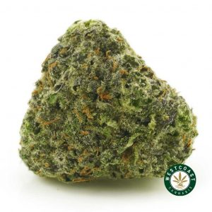 Buy Cannabis Purple Kush at Wccannabis Online Shop