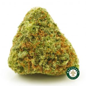 Buy Cannabis Mob Boss at Wccannabis Online Shop