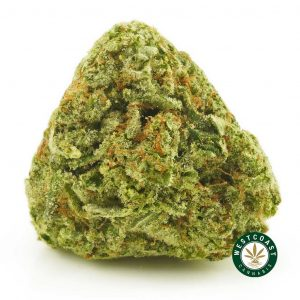 Buy Cannabis Pink Lemonade at Wccannabis Online Shop