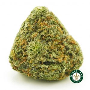 Buy Cannabis Banana OG at Wccannabis Online Shop