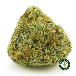 Buy Cannabis Super Sour Diesel at Wccannabis Online Shop