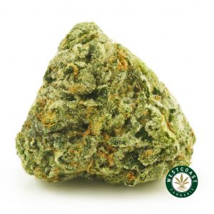 Buy Cannabis Shishkaberry at Wccannabis Online Shop