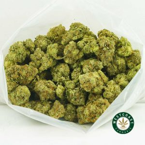Buy Cannabis Tom Ford at Wccannabis Online Shop