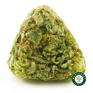 Buy Cannabis Bubba Kush at Wccannabis Online Shop
