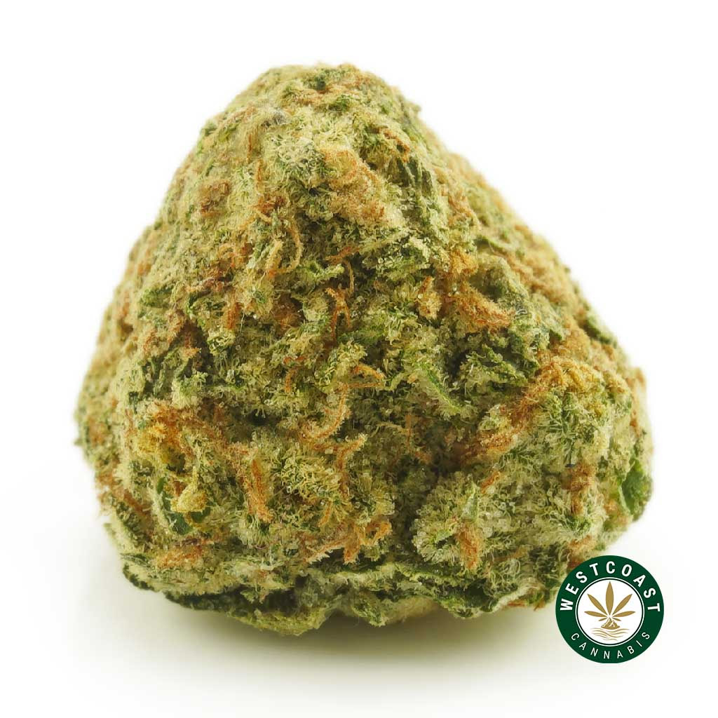 West Coast Cannabis Weekend Only Special + Free Gifts