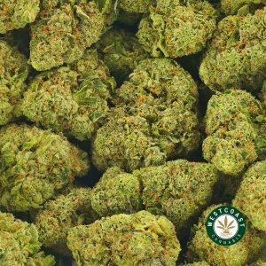 Buy Cannabis Candyland at Wccanabis Online Shop