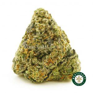 Buy Cannabis Island Pink Kush at Wccannabis Online Shop