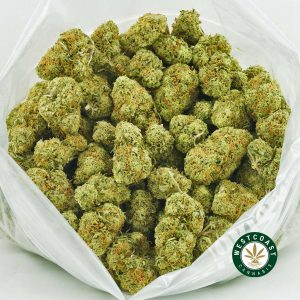 Buy Cannabis Fruit Loops at Wccannabis Online Shop