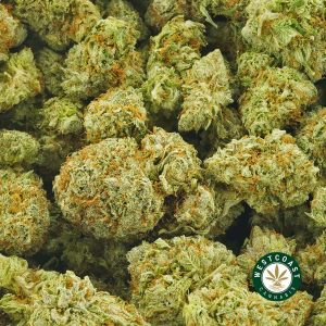 Buy Cannabis Purple Diesel at Wccannabis Online Shop