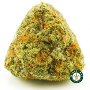 Buy Cannabis Thin Mint at Wccannabis Online Shop