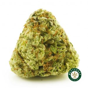 Buy Cannabis Alien Wedding Cake at Wccannabis Online Shop