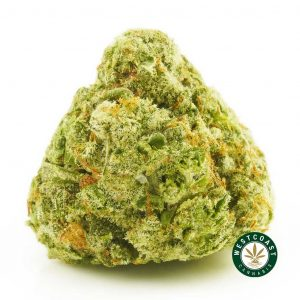 Buy Cannabis Citradelic Sunset at Wccannabis Online Shop