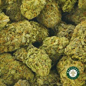 Buy Cannabis Durban Poison at Wccannabis Online Shop