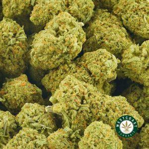 Buy Cannabis Passion Fruit Lemonade at Wccannabis Online shop
