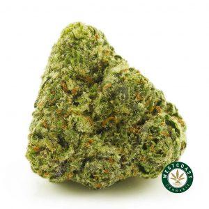 Buy Cannabis Black Tuna at Wccannabis Online Shop
