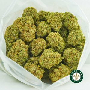 Buy Cannabis Pineapple Express at Wccannabis Online Shop