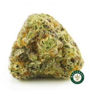 Buy Cannabis Miracle Alien Cookies at Wccannabis Online Shop