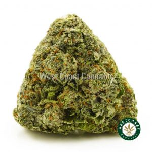 Buy Cannabis Strawberries and Cream online at Wccannabis Online Shop