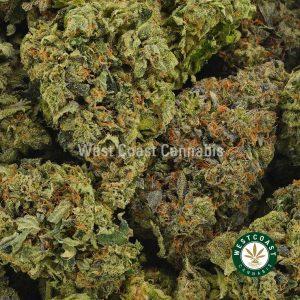 Buy Cannabis LA Confidential at Wccannabis Online Shop