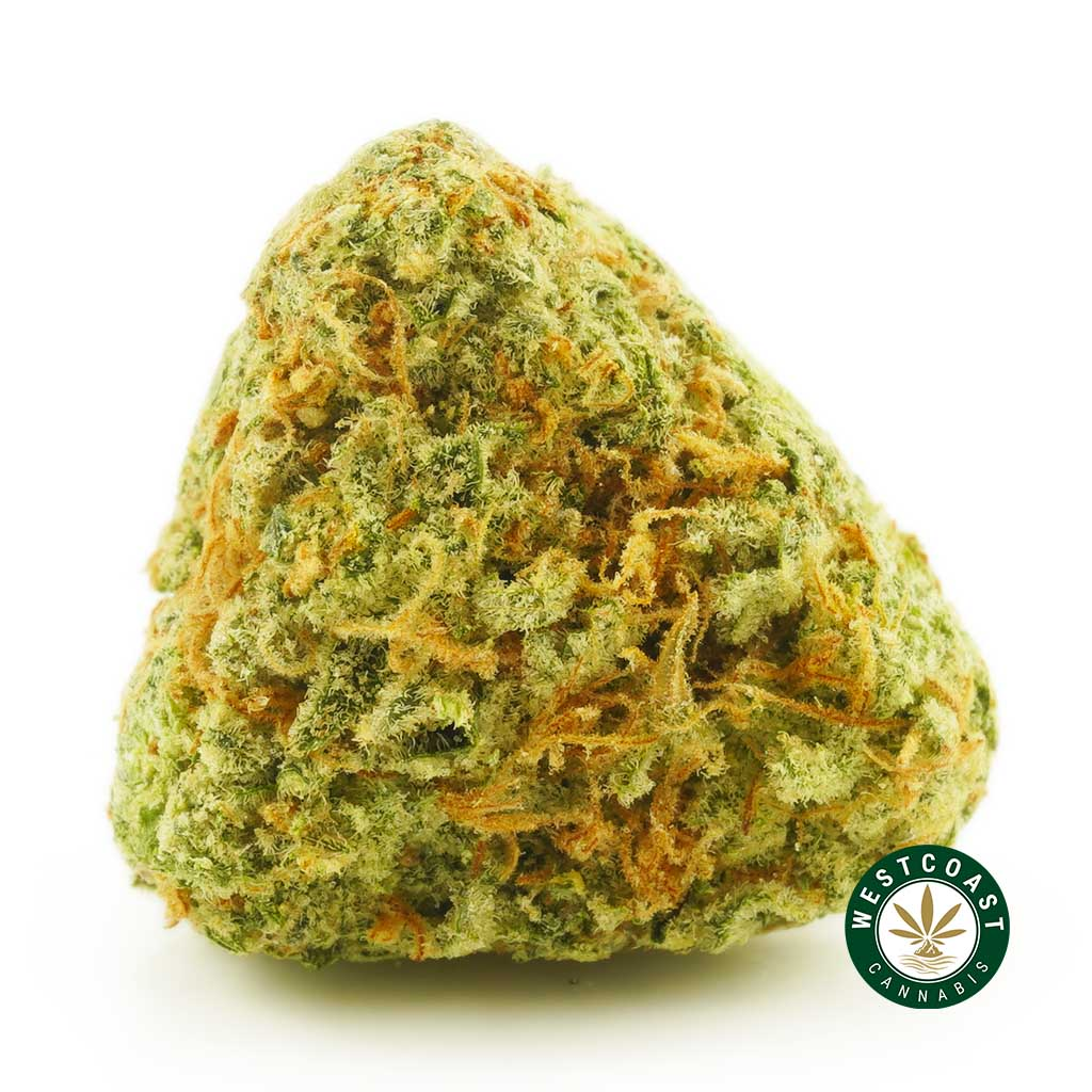 Buy Cannabis Walter White at Wccannabis Online Shop